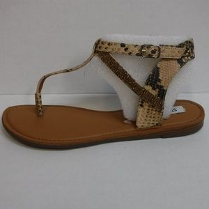 Steve Madden Size 9 Brown Sandals New Womens Shoes